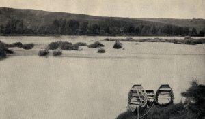Bosco cappuccio e fiume Isonzo