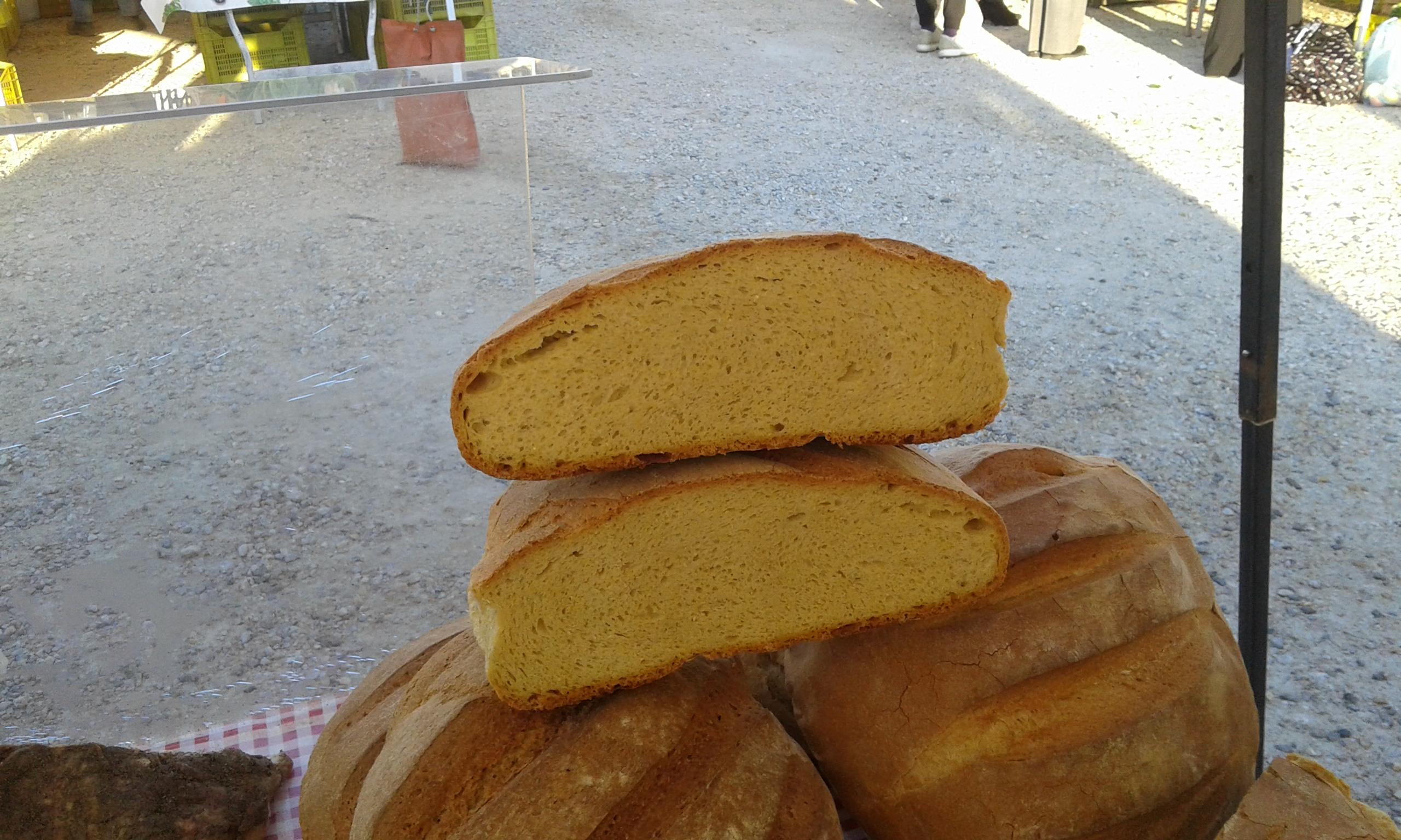 pane mais melani