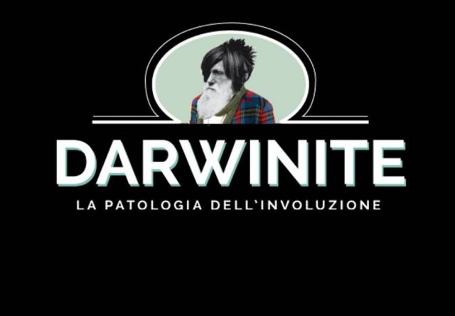 Darwinite night 2017