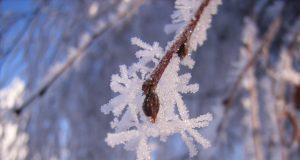 Consigli ghiaccio e neve