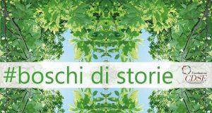 boschi di storie